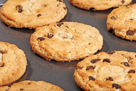 Closeup Chocolate Chip Cookies On Baking Sheet Stock Photo - 6325163
