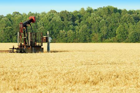 bomba de gasolina: bomba de aceite en un campo de trigo