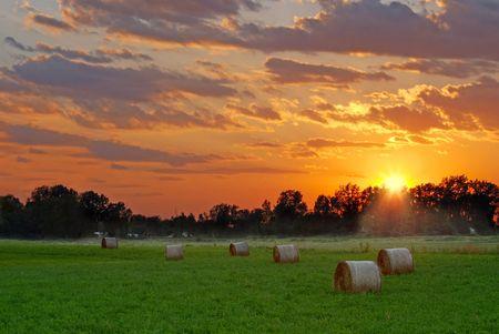 hay field: sole che tramonta sul campo di fieno