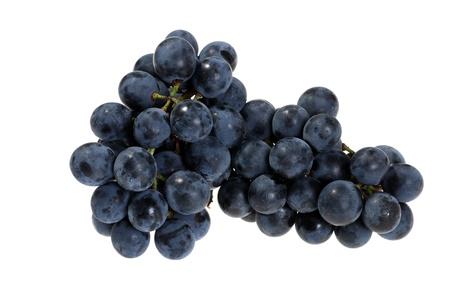 concord grape: fresh picked concord grapes Stock Photo