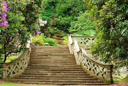 stone stairs in Hever Castle gardens England