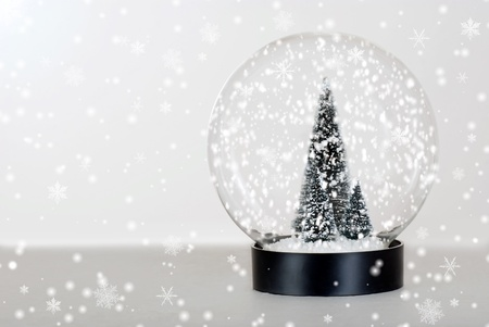 Christmas tree snow globe photo