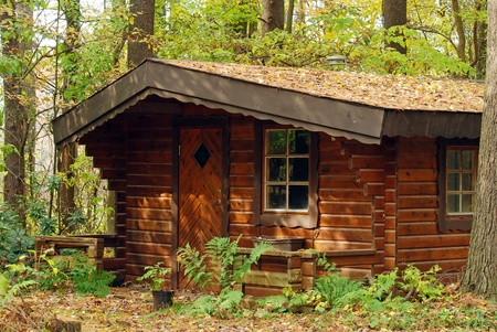 log cabin photo