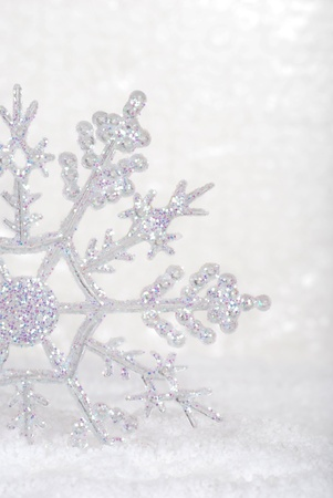 snowflake closeup photo