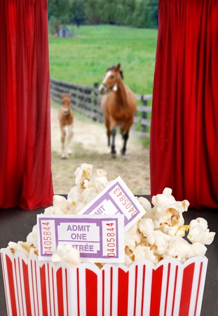 Popcorn and tickets at the movies photo