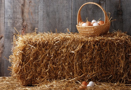 Basket of eggs on hay bale photo