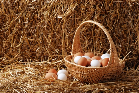 chicken nest: Brown and white eggs in a basket