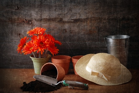 grunge gardening still life with texture photo