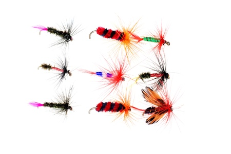 Isolated dry fishing flies photo