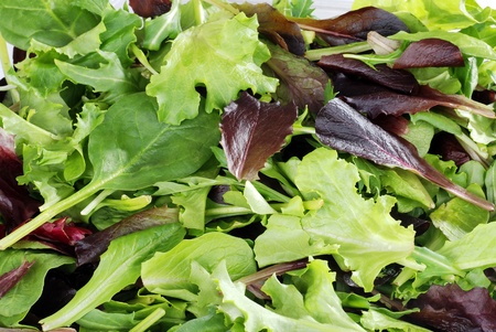 Mixed greens lettuce background