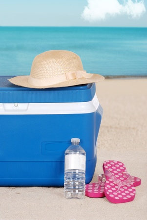ice chest: cooler woman hat and sandals on the beach