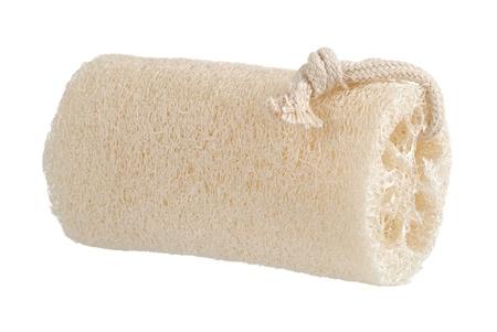 fibrous: loofah sponge