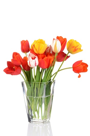 tulips in vase: colorful tulips in a vase