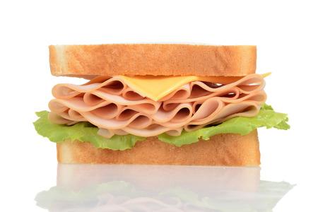 macro chicken and cheese sandwich photo