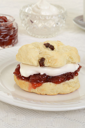 british food: closeup english devon cream tea
