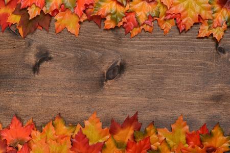 가을 색깔의 단풍 나무 잎의 행 스톡 콘텐츠