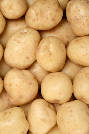protein crops: new potatoes background