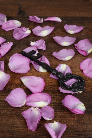 closeup black key with rose petals Stock Photo