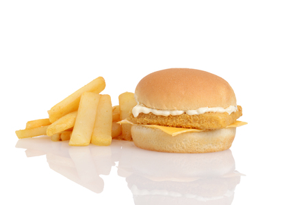fillet fish sandwich with french fries