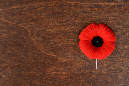 top view remembrance day poppy