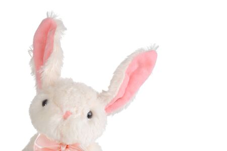 easter bunny with pink bow