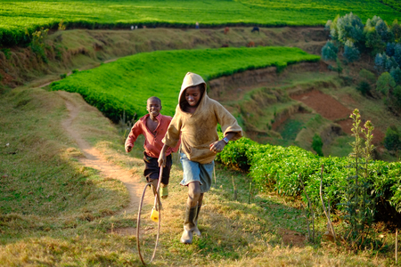 KibuyeRwanda - 08252016: African boys playing hoop rolling in a tea plantation in Rwanda on a dusty path Editorial