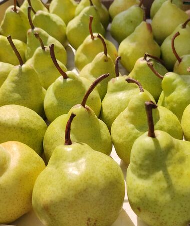 background of ripe yellow pears stand in rows one behind the other, cuttings in different directions, side view, abstract, flat layout, foodfoto fruit composition Stock Photo