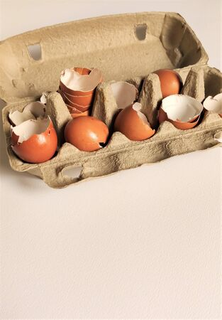 Biege shell halves of broken eggs in cardboard cells, top view, flat layout, close-up, aerial photography, food waste, eco-friendly recycling. White background. Side view, flatlay Stok Fotoğraf