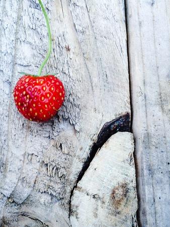 Strawberry of summer