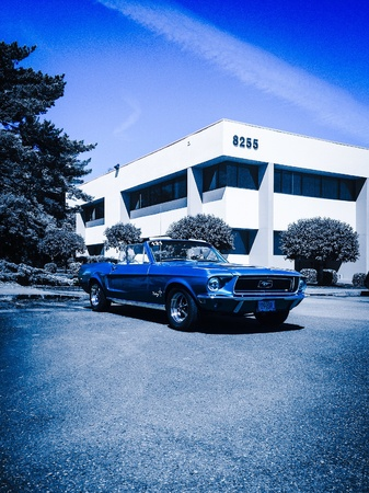 Beslaan van blauw Stockfoto