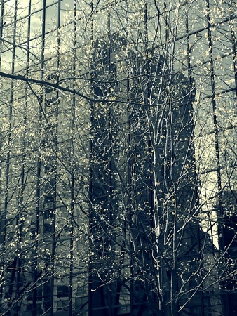 reflective: Reflective art of Seattle Stock Photo