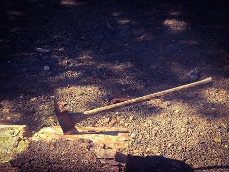 Chopping wood 版權商用圖片