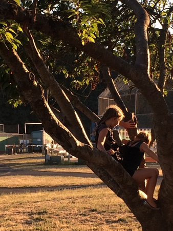 Girls in the tree relaxing after the game