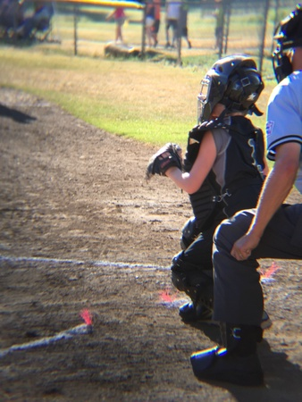 umpire: Catcher at the big game