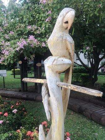 Jamaica parrot carving Stock Photo