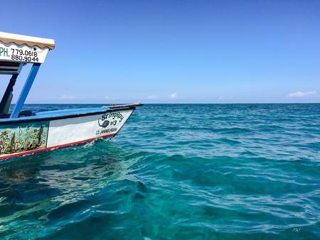 bottom: Glass bottom boat