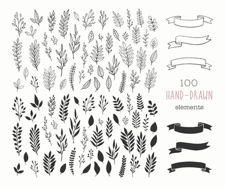 Set of vector hand drawn floral design elements. Vintage branches, flowers, leaves, banners and ribbons. Romantic botanical illustrations. Vecteurs