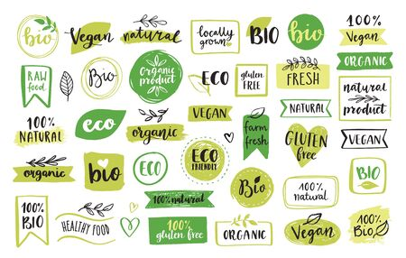 Set di icone ed elementi di alimenti biologici, eco, vegani e naturali per il mercato alimentare, e-commerce, confezionamento di prodotti biologici, promozione di una vita sana, ristorante. Elementi di disegno vettoriale disegnati a mano.