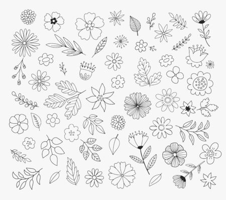 Cute doodle flowers and leaves. Hand drawn floral illustrations. Vector design elements.