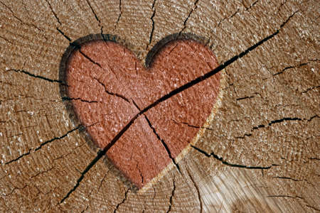 the appearance: Heart sign on wood