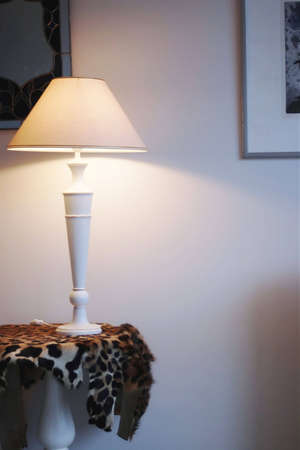 lampekap: Kamer en lampenkap