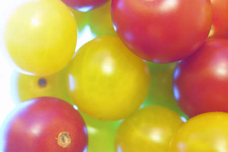 Cherry tomatoes. Close up of red and yellow cherry tomatoes photo
