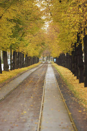 tramway: Tramway road in autumn Stock Photo