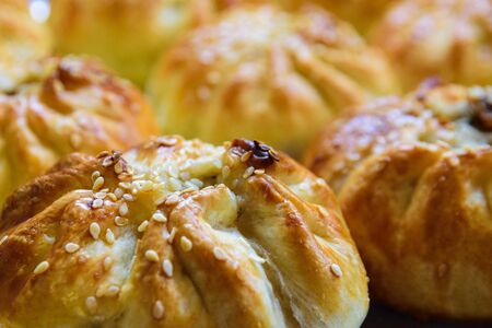 Traditional oriental meat pastries on a plate close-up. Bun with lamb.