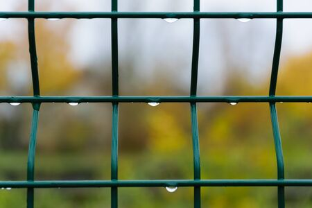 Raindrops on a metal grate. Green metal fence close-up.