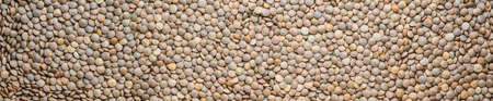 Close-up red lentils with husk, dry beans. red lentils seeds abstract panoramic background.