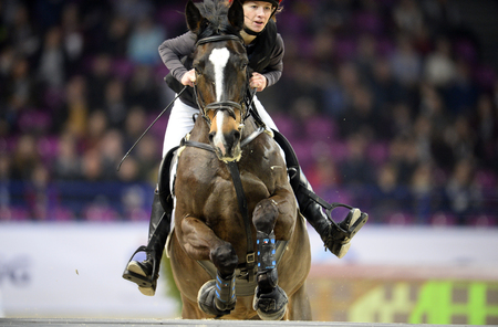 hale: WARSAW, POLNAD - FEBRUARY 26: Cavaliada International Horse Jumping indor contest in Torwar Hale in Warsaw Editorial