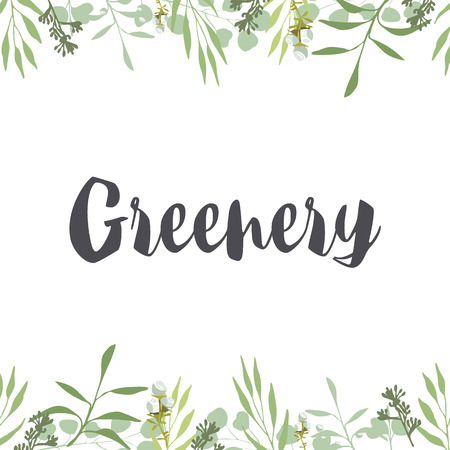 Green leaves and herbs, white flowers on white background, Frame, card, ivitation, template, banner. Herb, tree, organic, natural, greenery, rustic. Illusztráció