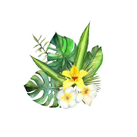 Watercolor realistic bouquet. Tropical exotic flower, palm lef, yellow orchid, white plumeria composition on white background.