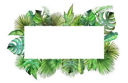 Watercolor plant leaves frame. Palm leaf, monstera, tree illustration. Stock fotó